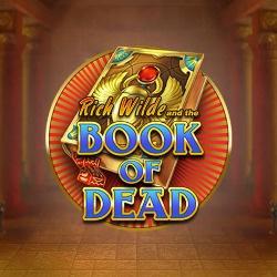 книга мертвой высокой дисперсии сот